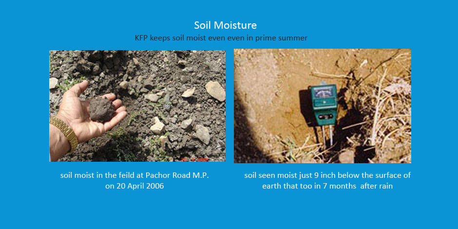KFP Keeps Soil Moist Even in Prime Summer